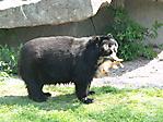 ,, Zoo Stuttgart 18.04.2011 ,,